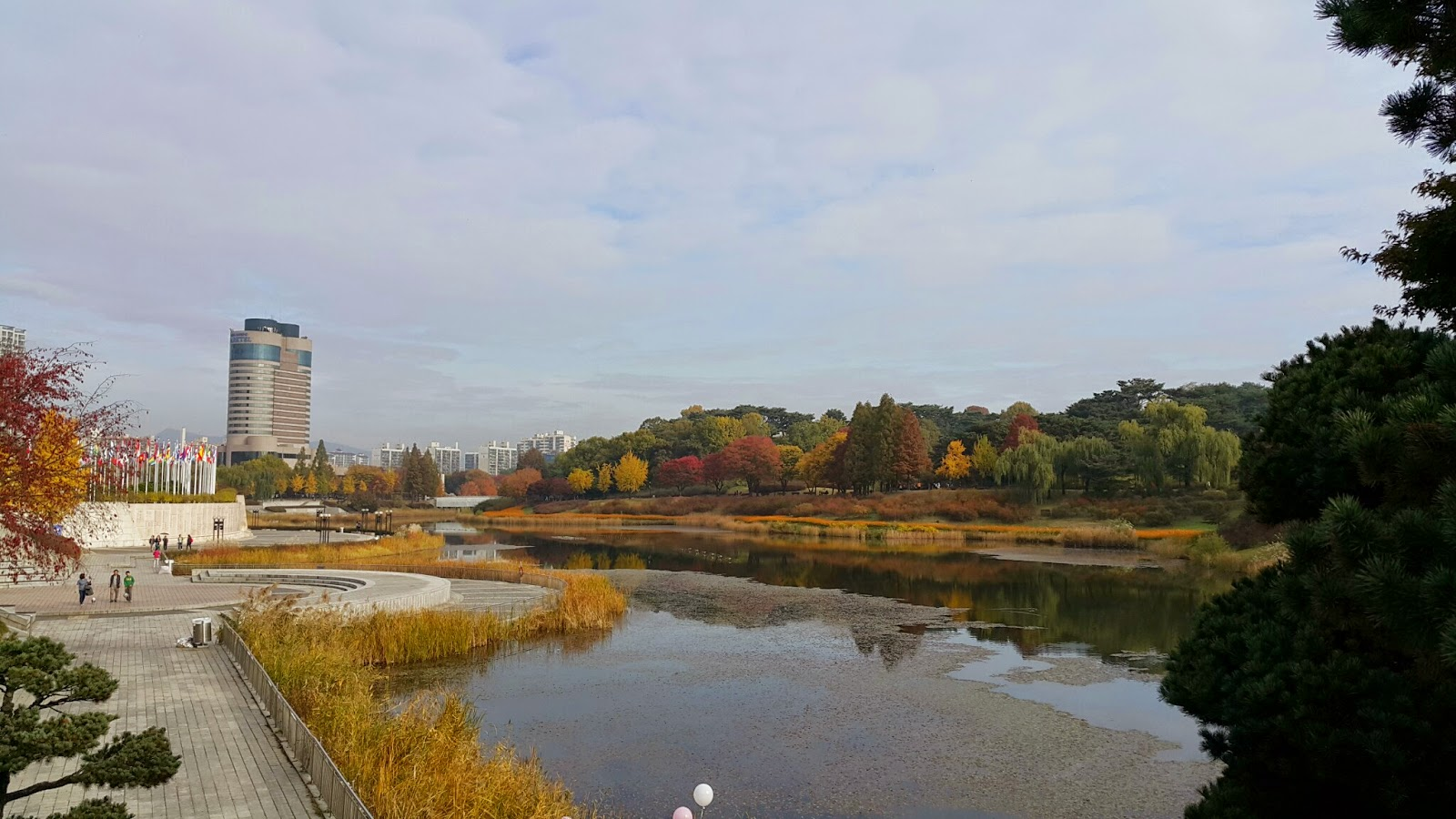 Fall colors of the Olympic park