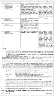 NSI Job Circular 2021 Pdf Download