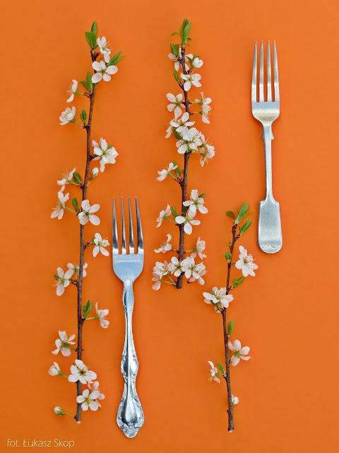jadalne kwiaty tarniny