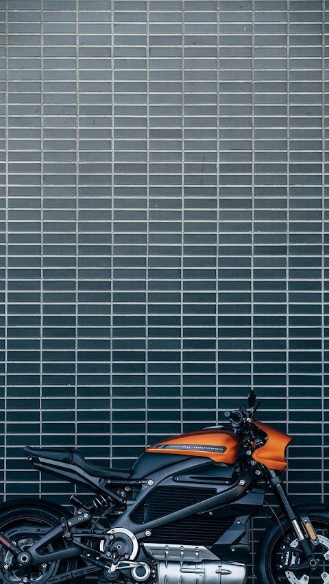 Một góc đẹp của Harley Davidson Livewire