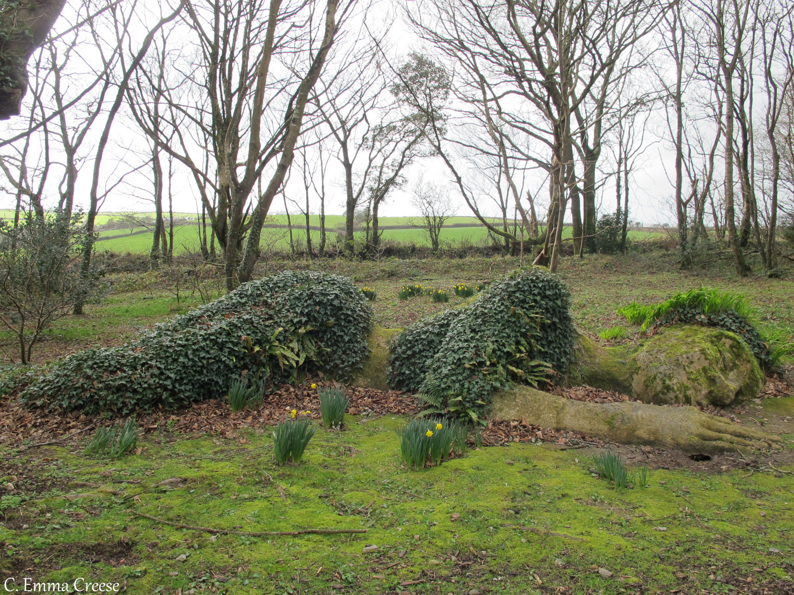 Lost Gardens of Heligan Road trip itinerary Truro Cornwall Adventures of a London Kiwi