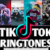 Tik Tok New Trending Ringtones 2019