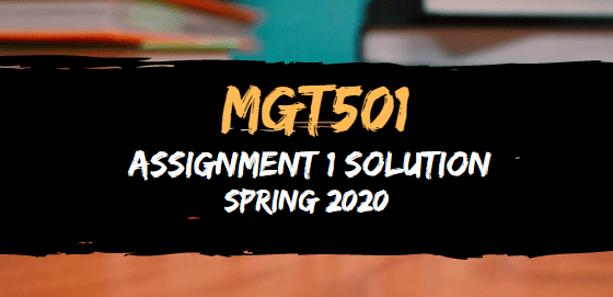 MGT501 Assignment 1 Solution Spring2020