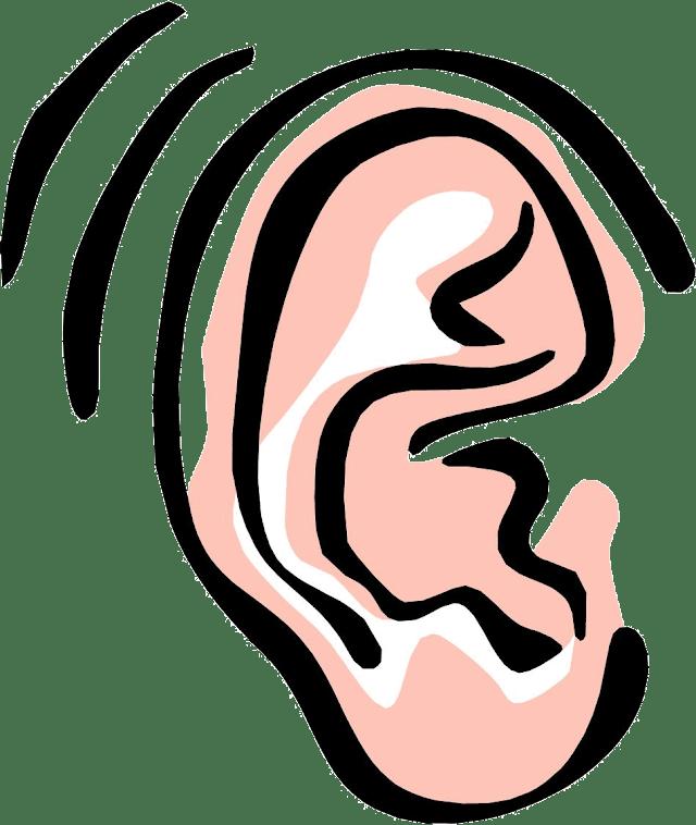 kan ke dard ki dawa - कान दर्द की आयुर्वेदिक दवा