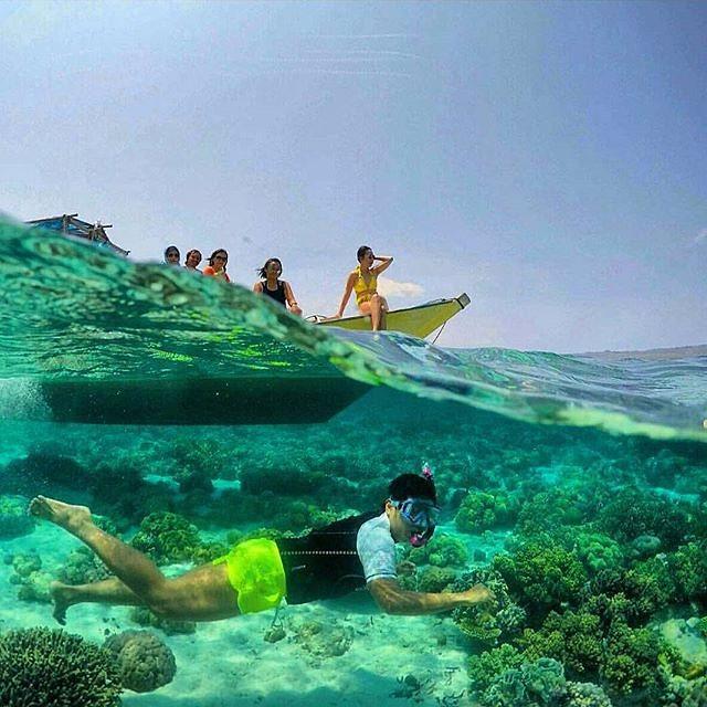 foto indah snorkeling di wakatobi sulteng