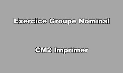 Exercice Groupe Nominal CM2 Imprimer
