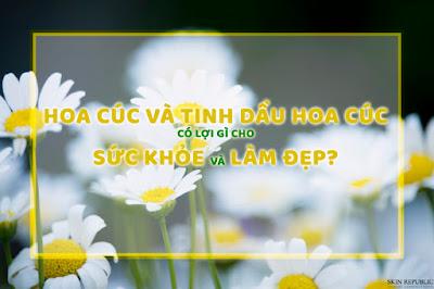 Tinh chất hoa cúc: đa năng và hiệu quả trong làm đẹp