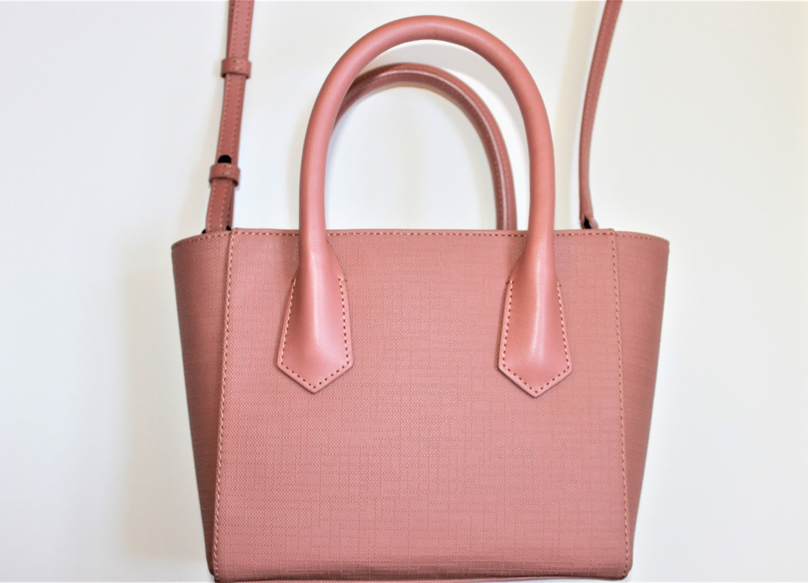 5fc865735c3b Judy s Beauty Fixations  Petite Tote Bag from Dagne Dover Review!