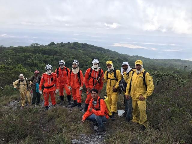 Bombeiros e Voluntários combatem incêndio em Parque Estadual de  Miguel Calmon