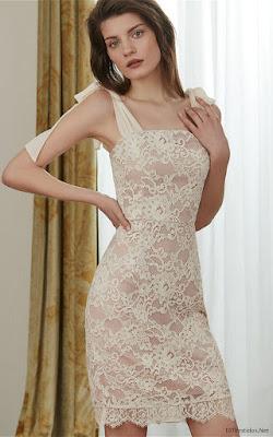 Vestidos de Encaje Elegantes