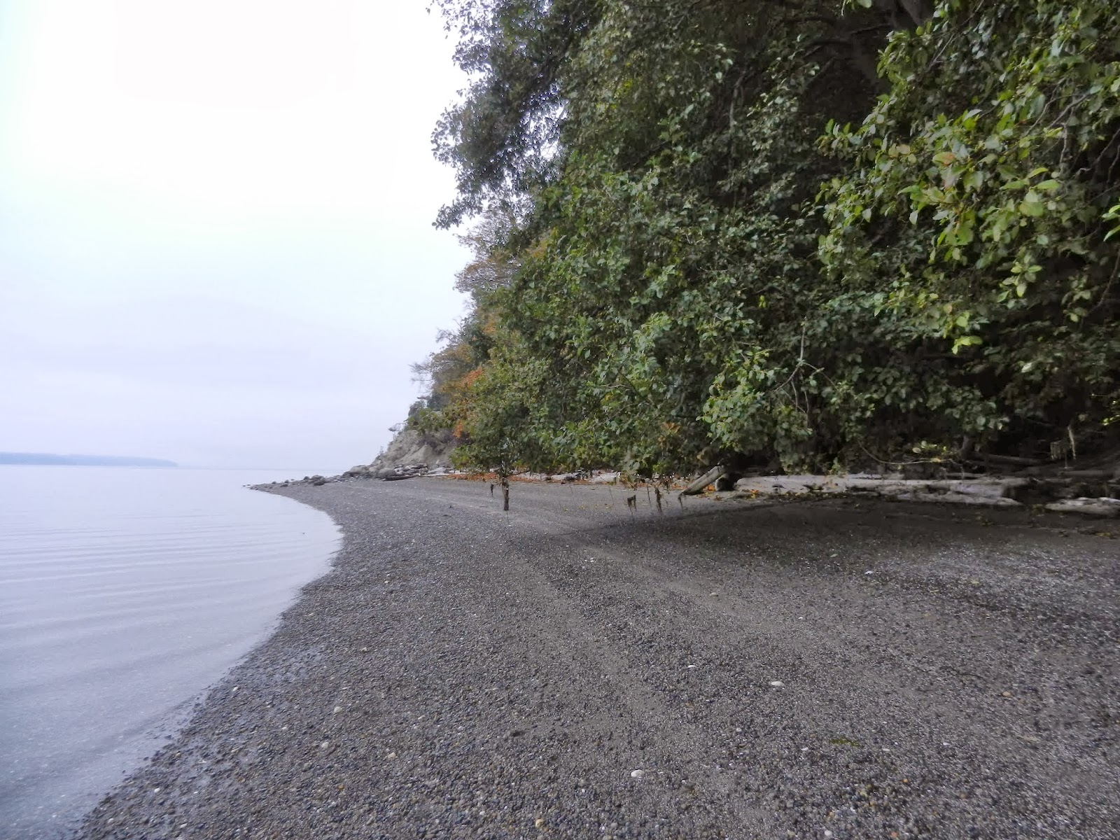 Camano Island Dump The Silent Boomer Beach Walks Chapters Ahead Clear