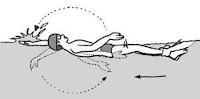 Pada renang gaya punggung, gerakan tangan dimulai dari akhir tarikan