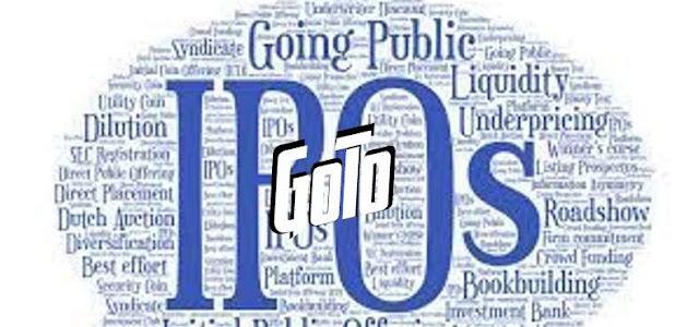 GoTo Go Public