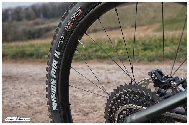 """Grobstollige 2,4"""" breite Reifen von Mixxis Minion am Focus Sam²."""