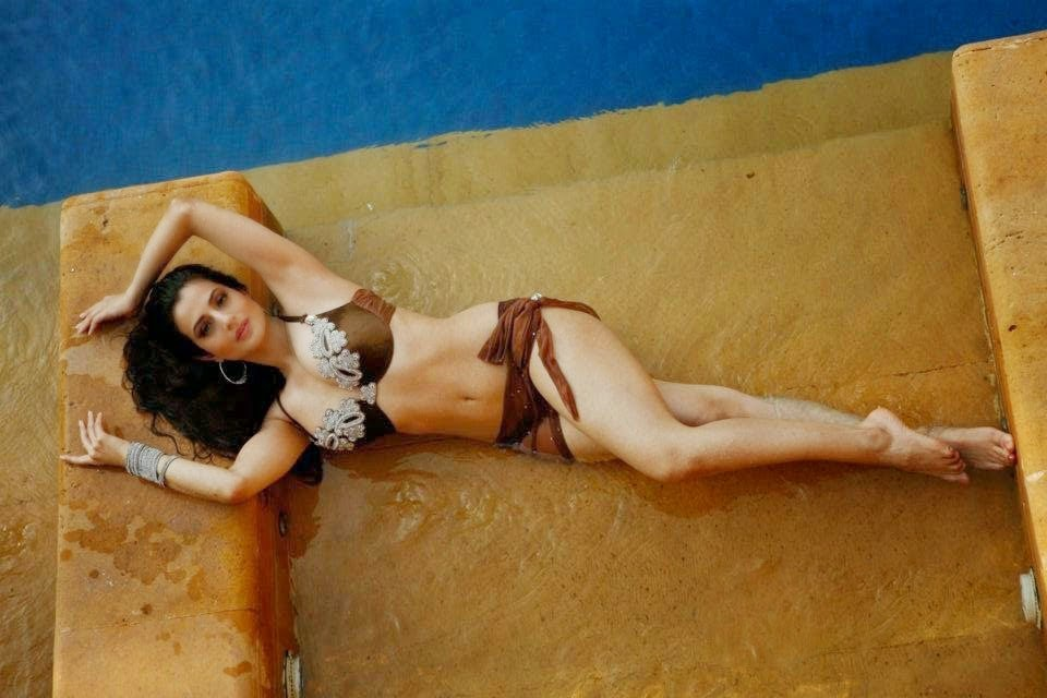 Sexy Ameesha Patel in a brown bikini near pool