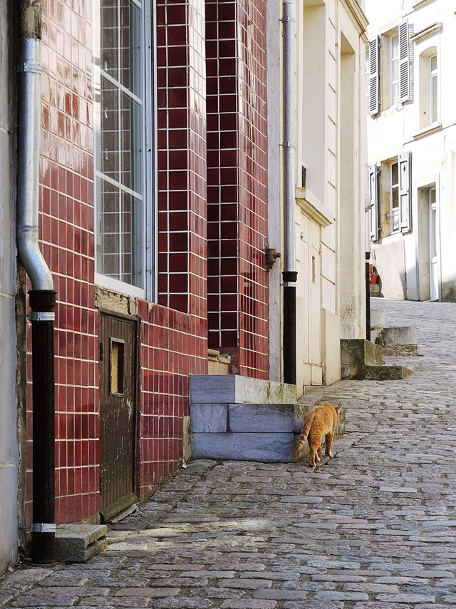 Bouillon City