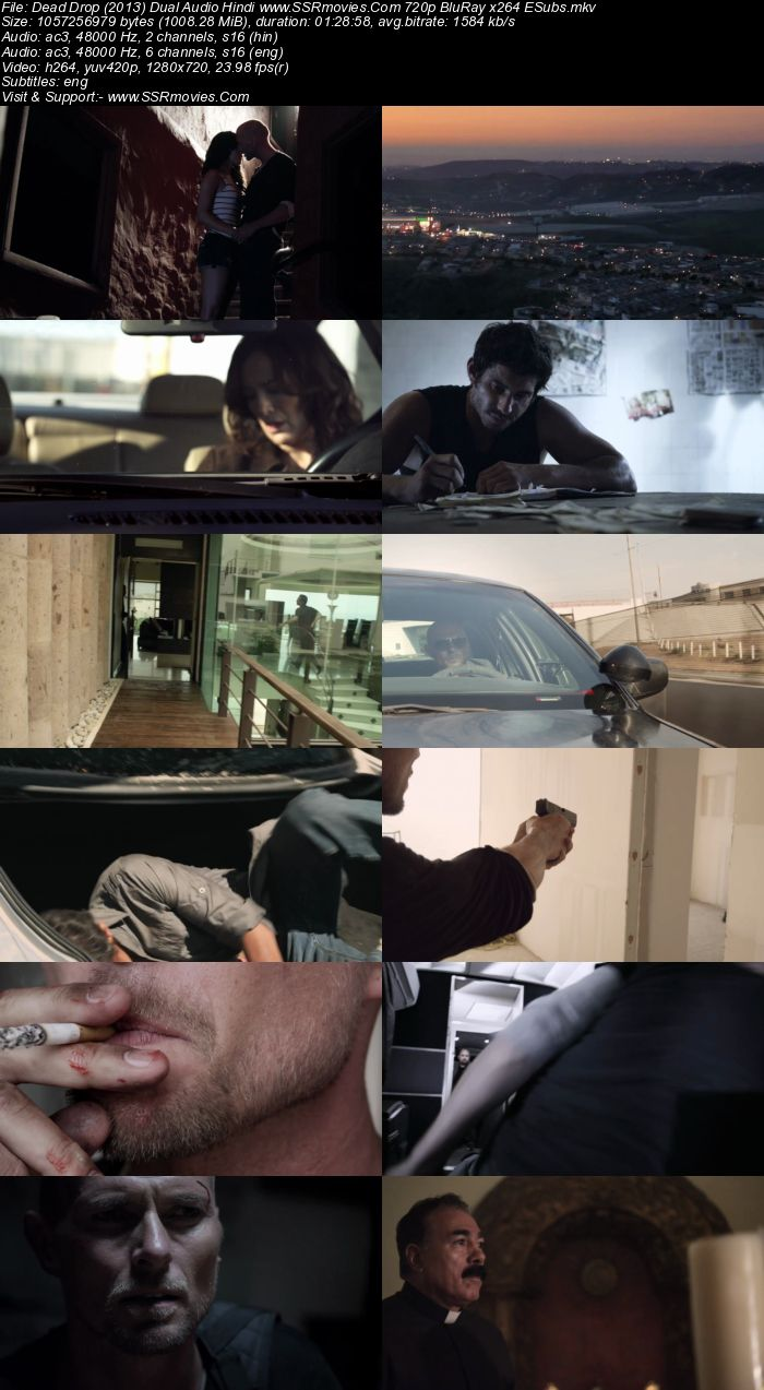 Dead Drop (2013) Dual Audio Hindi 720p BluRay x264 1GB ESubs Movie Download