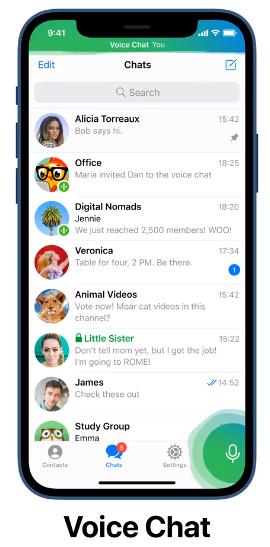 telegram-voice-chat