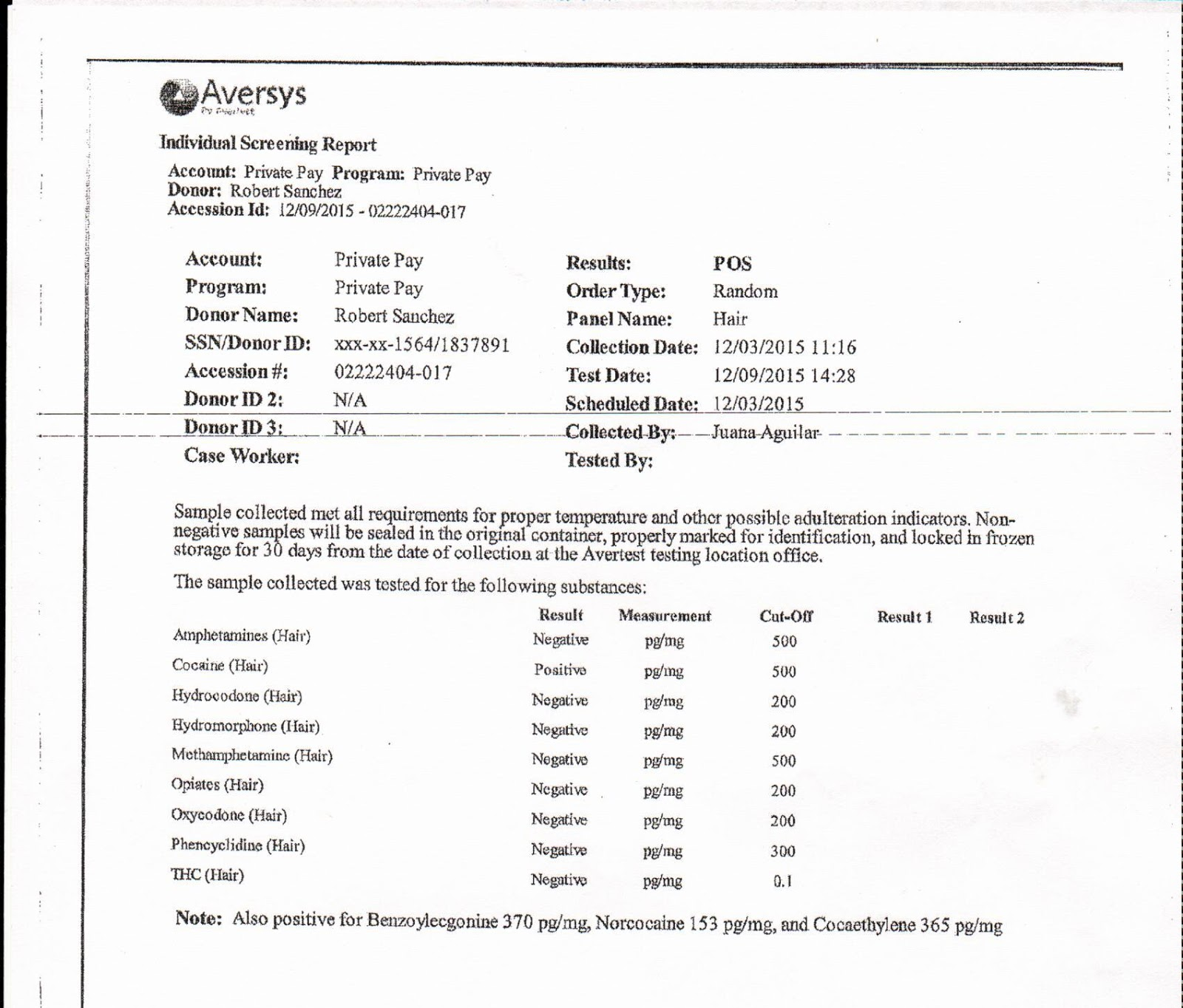 Hairysis Lab Worksheet