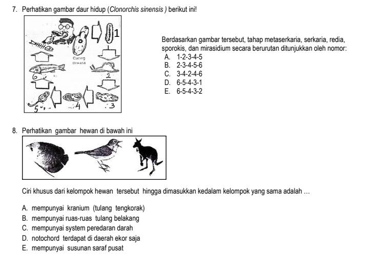 Soal dan Jawaban Ujian Sekolah US Biologi SMA tahun 2022-2023 Jurusan/prodi IPA