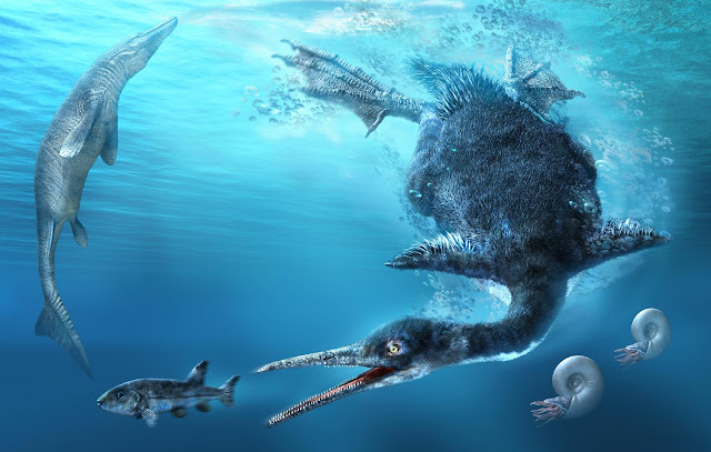 Amateur collectors in Japan discover country's first and oldest fossil diving bird