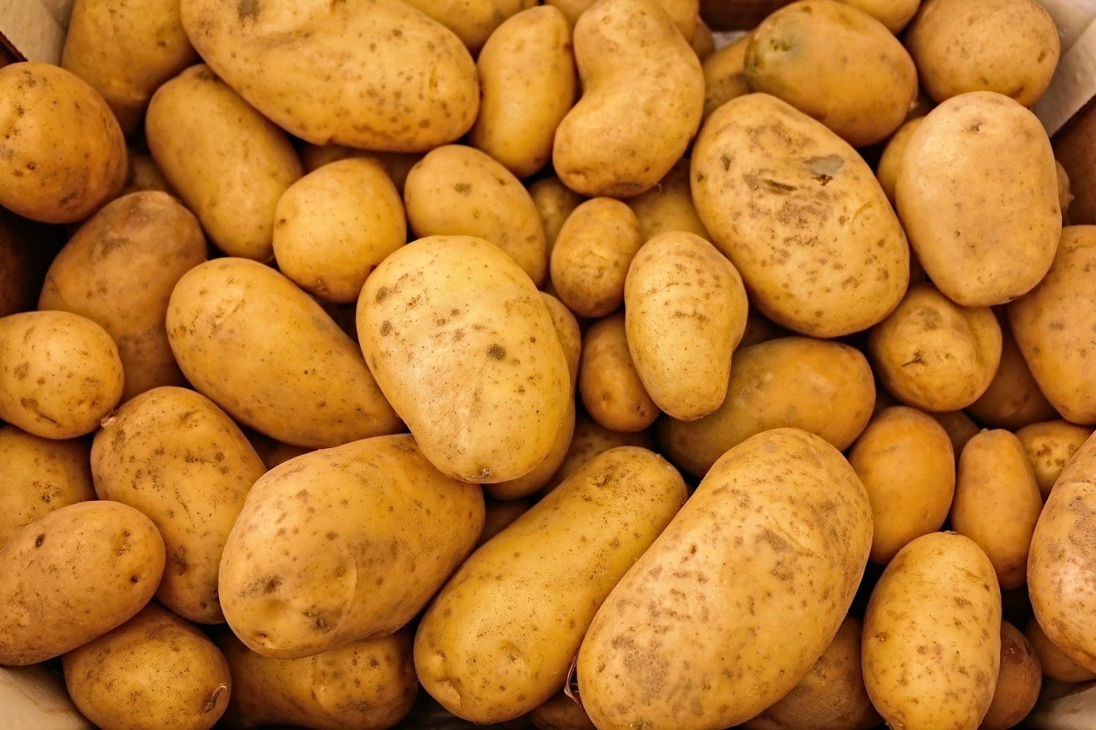 ماهي فوائد البطاطا الحلوة للجسم للوجه للمناعة للضغط
