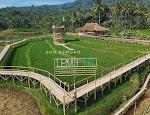Info Legkap Wisata Jembatan Sawah Lemah Ijo Semarang