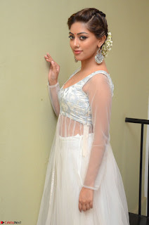 Anu Emmanuel in a Transparent White Choli Cream Ghagra Stunning Pics 077.JPG