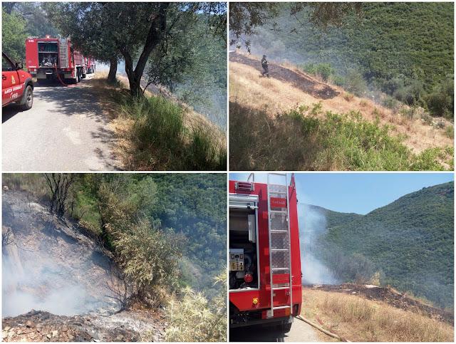 Φωτιά σε ανεξέλεγκτη χωματερή στη Λάκκα Ηγουμενίτσας (+ΒΙΝΤΕΟ)