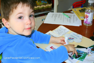 toddler homeschool, butterfly lapbook, butterfly unit study