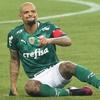 www.seuguara.com.br/Palmeiras/Copa do Brasil 2021/