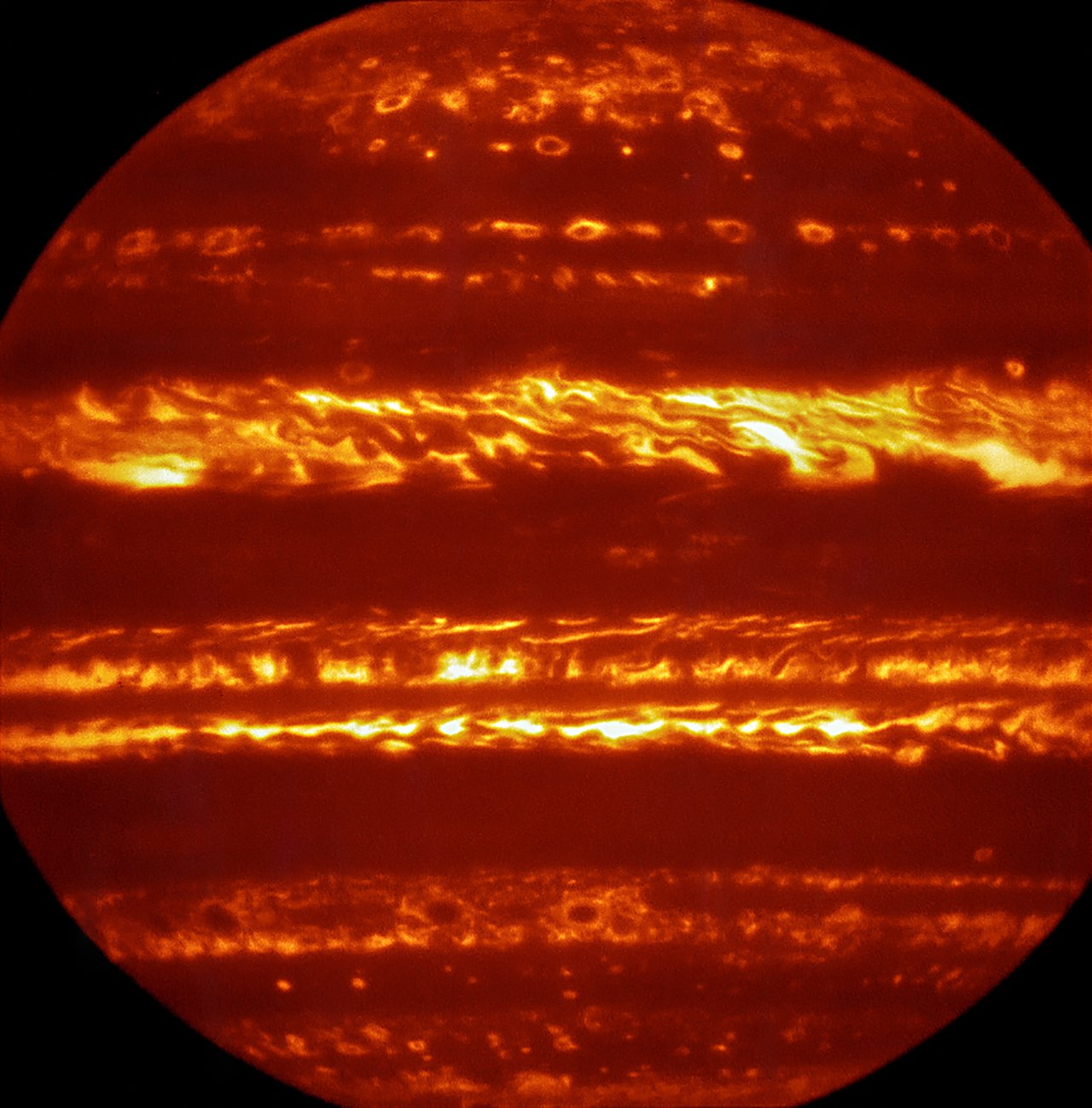 Two Buck Howie : Two-Thousand-Mile-Long Fish In Orbit Around Jupiter