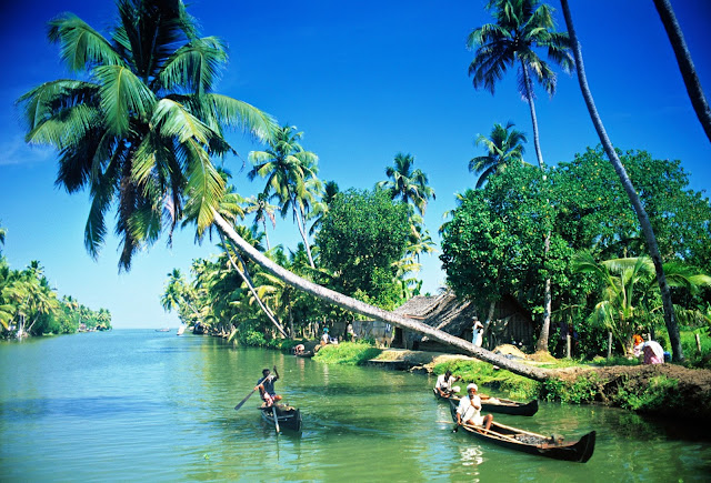 Brackish-Lagoons-Alleppey
