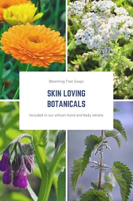 Picture of botanicals: calendula, white yarrow, comfrey and nettle leaf