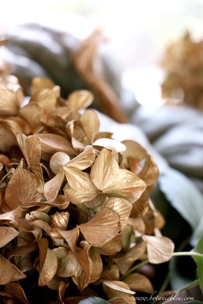 spray-paint-gold-dried-hydrangeas