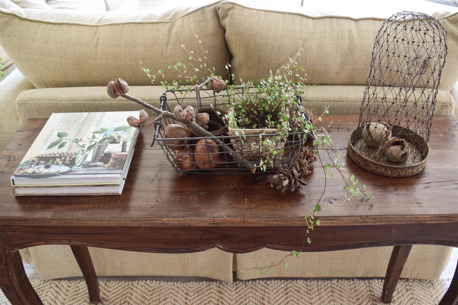 3 Dekoideen für deinen Konsolentisch und Sideboard. Natürlich dekorieren im Wohnzimmer Flur Esszimmer. Dekoidee Konsole Naturdeko  Mühlenbeckia