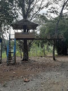 rumah pohon yang masih tersisa