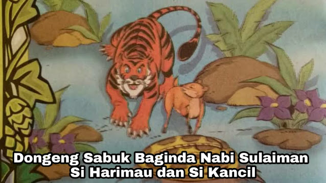 Dongeng Si Macan dan Si Kancil - Sabuk Baginda Nabi Sulaiman