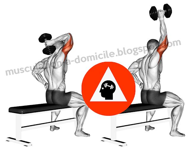 exercice musculation triceps extension nuque haltère un bras
