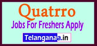 Quatrro Recruitment 2017 Jobs For Freshers Apply