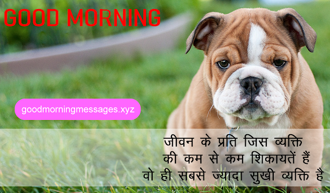 Cute Puppy Good Morning Pictures With Message In Hindi