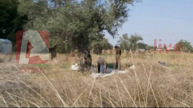 Κύπρος: Τούρκοι μπήκαν σε ελληνικά χωράφια και έκλεψαν ελιές