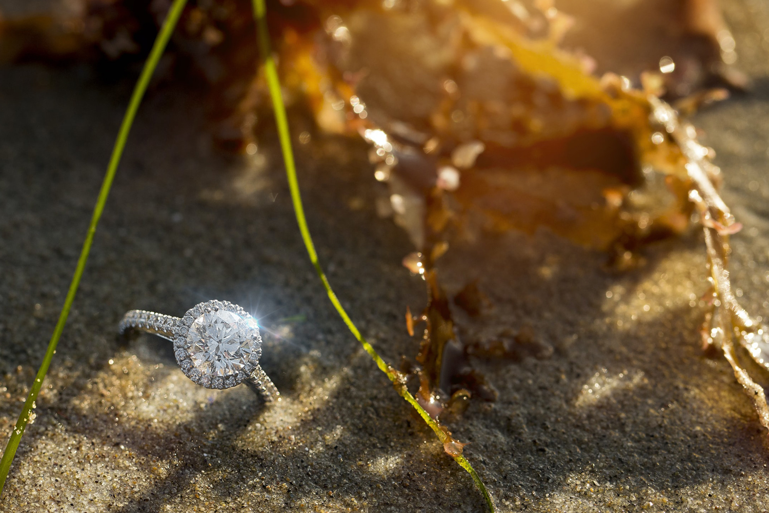 an engagement ring buried in the sand on a beach