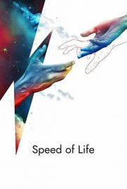 Speed ​​Of Life 2019