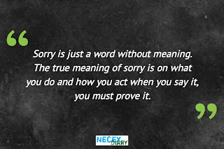 sorry quote #22