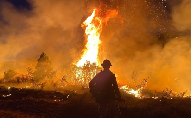 Pine Gulch Fire Becomes 'Record Fire' in Colorado History with 139,006 Acres in Size