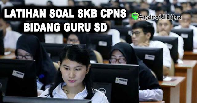 Contoh Soal SKB CPNS Guru SD, Latihan Soal Seleksi Kompetensi Bidang CPNS Guru SD, Soal test SKB CPNS Guru Sekolah Dasar