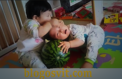baby cute twins moments and Fighting