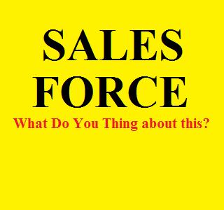 Apa itu Sales Force ? Apa Tugas dan Tanggung Jawab Sales Force ?
