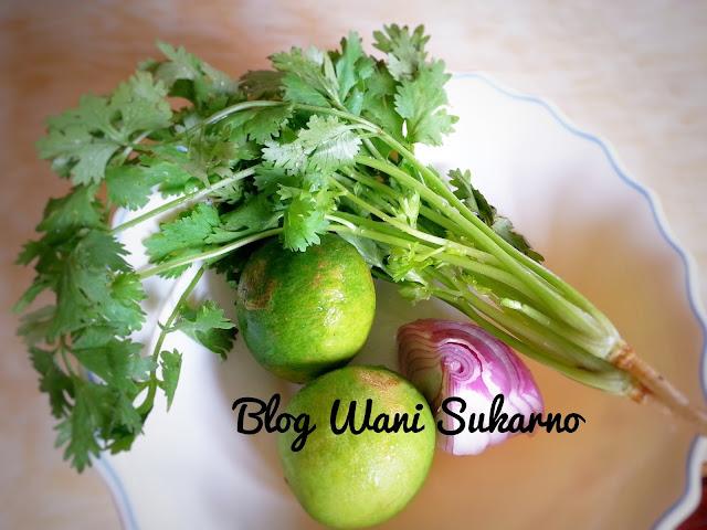 Resepi Salsa Tembikai Sesuai Untuk Pembuka Selera